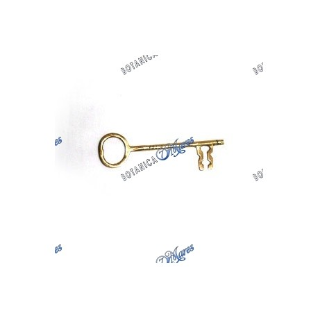 <p>Brass Key Medium, Llave mediana</p>