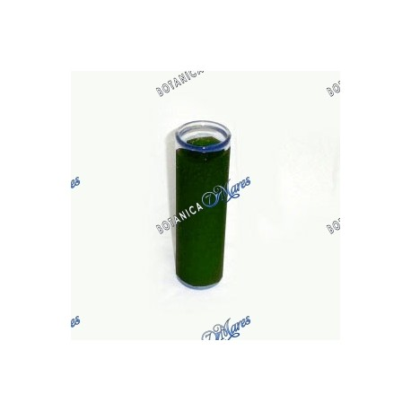 7 Days Green Candle