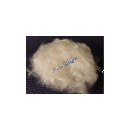 <p>One pack of compressed 1oz.</p> <p>Silk cotton is a super soft silky cotton like fiber sustainably harvested from the rain f