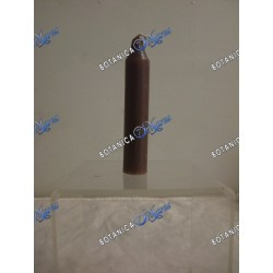Sabath/Household Candles (1 bx/12 units) Brown