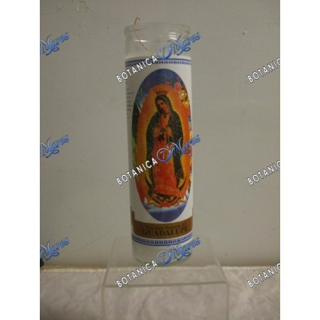 7 Days Our Lady of Guadalupe Candles (1 bx/12 units)