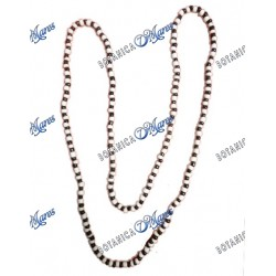 Eshu Necklace (Dozen)